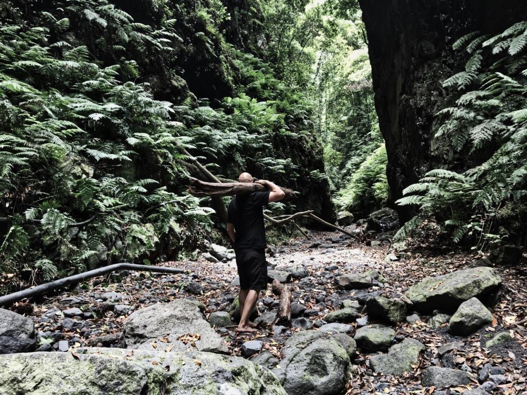 Gehen Bewegung Natural Movement Fitness Training