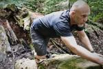 natürliche bewegung crawling paul mandelkow